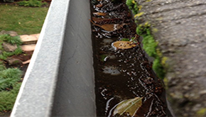 Gutter Cleaning - Thumb